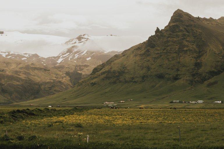 horses&mountains
